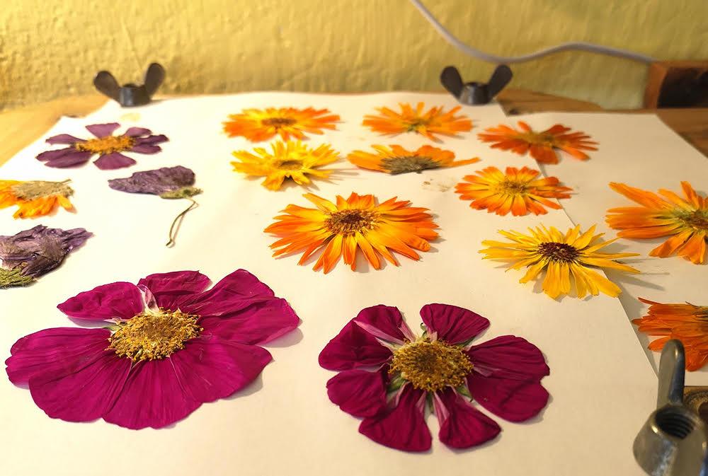 Schönes aus Blumen DIY